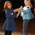 Artificial Falling Snow - Indoors/Outdoors